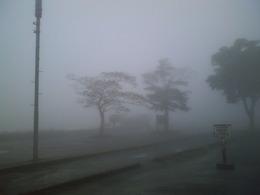 20100627-霧の芦ノ湖.JPG